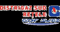 LogoDISTRIGAZSUD255x1401